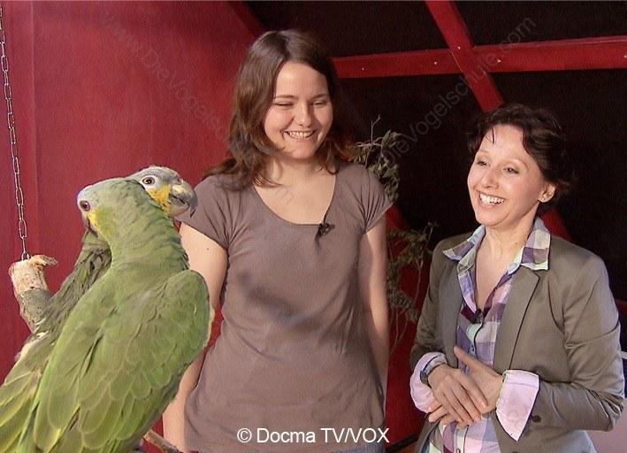 Schreiende Amazonen | 3 Engel für Tiere | Menschen & Papageien