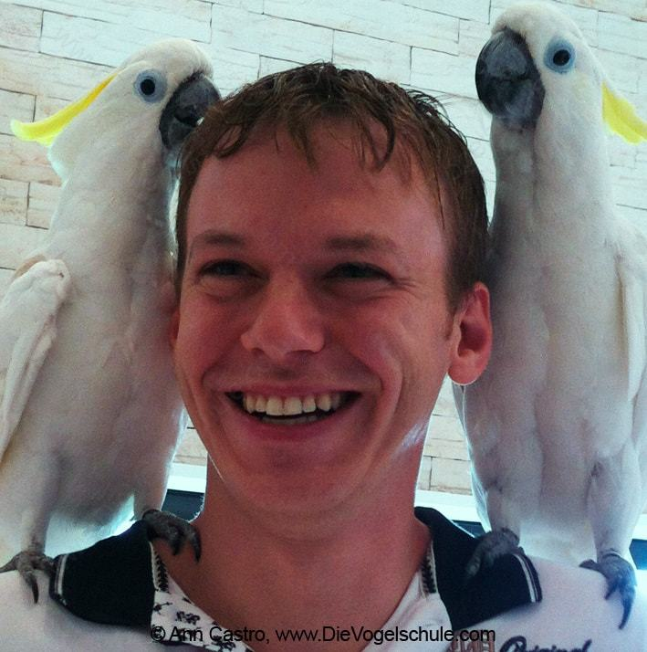 3 Engel für Tiere | Bissige Kakadus | Bild 1