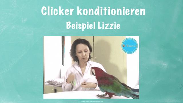 MODUL 4: PRÄZISION</br>Du lernst, mit dem Clicker gewünschte Verhalten exakt zu erfassen