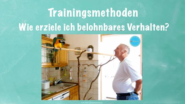 MODUL 5: METHODE</br>Du lernst, wie verschiedene Trainingsmethoden eingesetzt werden