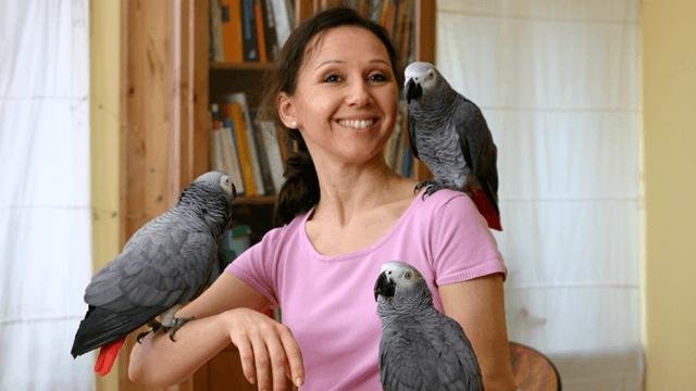 Deine Dozentin - Papageienexpertin Ann Castro <u>... mehr</u>