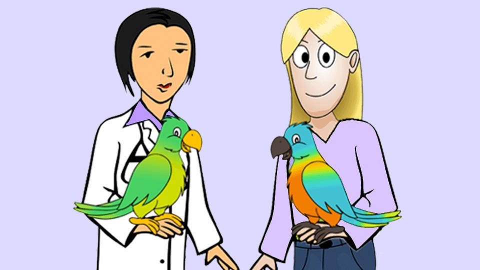 Gesundheit & Erste Hilfe für Papageien & Sittiche  <u>... mehr</u>