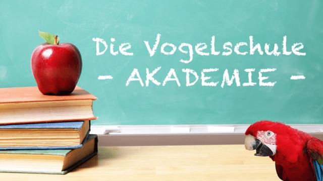 Die Vogelschule Akademie für Papageien & Sittiche