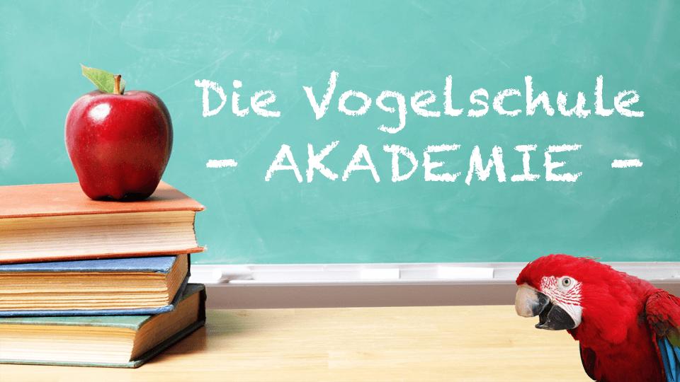 Mitgliedschaft - Flatrate für Kurse, Coachings & Lerngruppen  <u>... mehr</u>