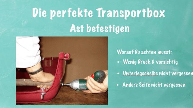 PROJEKTBEISPIEL<br>Transportbox