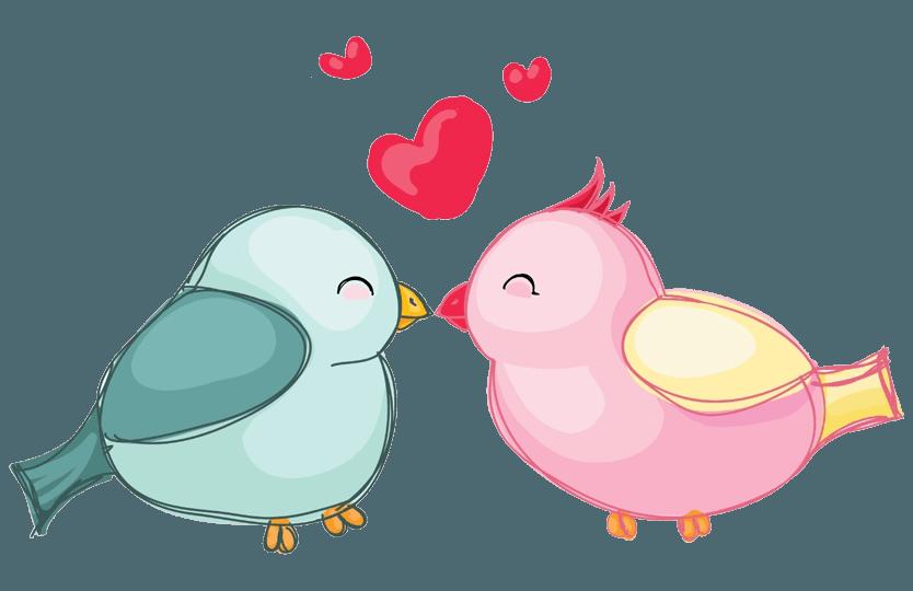 Verpaarung & Vergesellschaftung bei Papageien & Sittichen