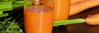 Saft für Papageien & Sittiche WP