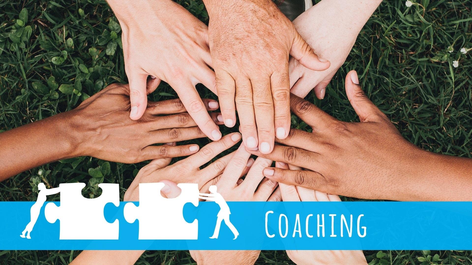 Coaching für Papageien & Sittiche