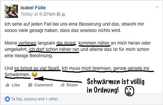 Papageientraining Kurs Kommentar Isabel Fülle