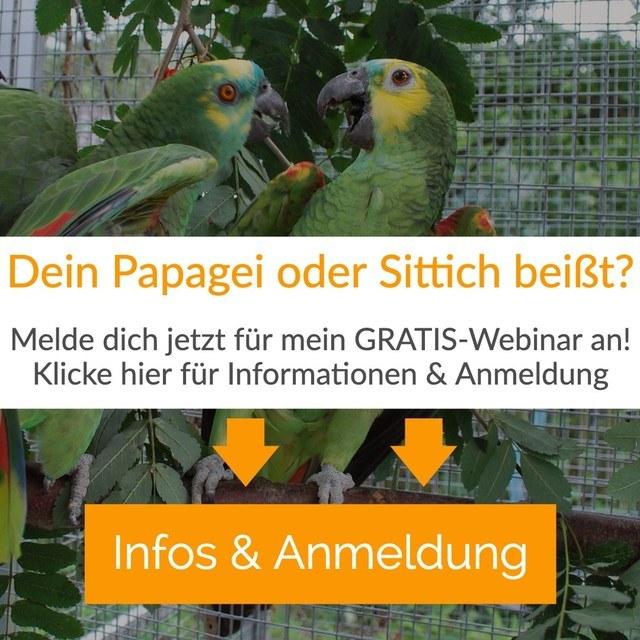 Dein Papagei beißt? Gratis Webinar
