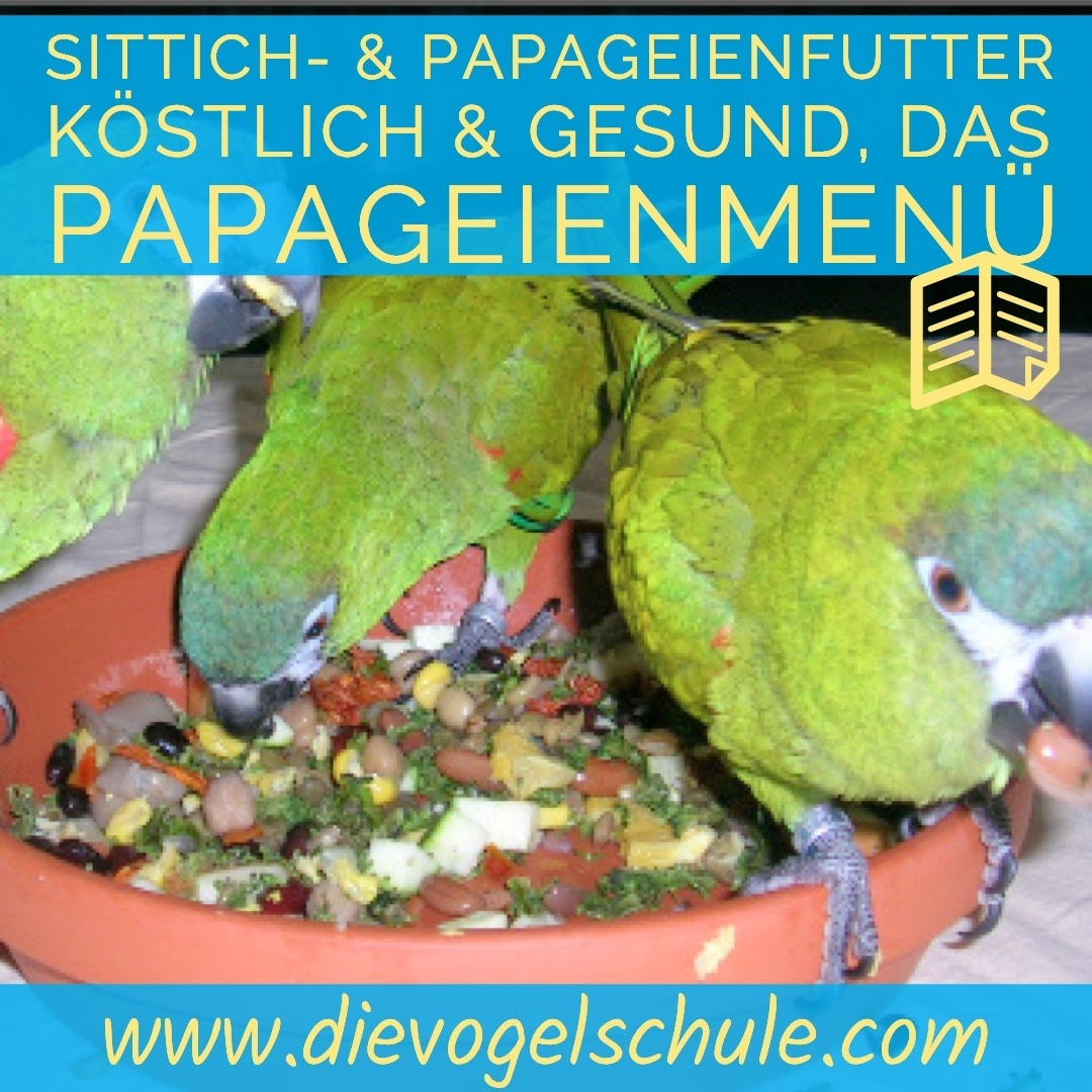 Papageienfutter