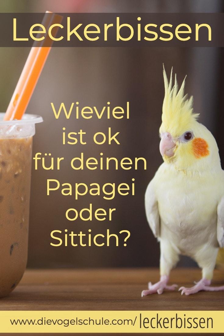 Leckerbissen für Papageien & Sittiche