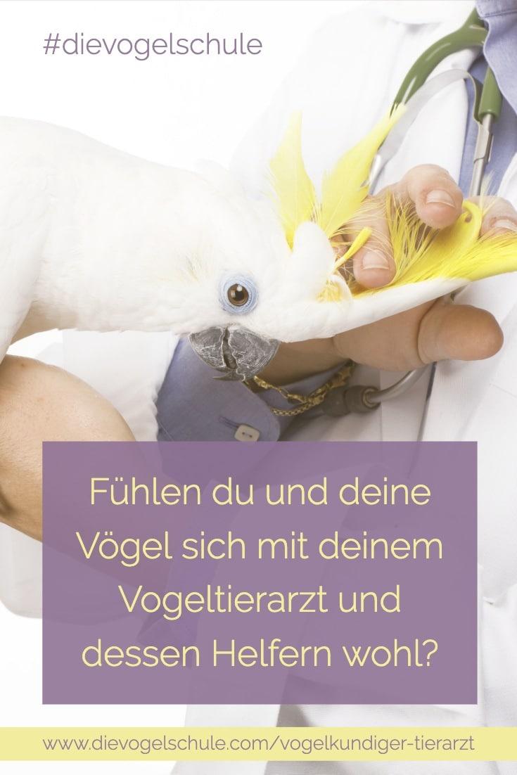 Kakadu & vogelkundiger Tierarzt Papageien & Sittiche