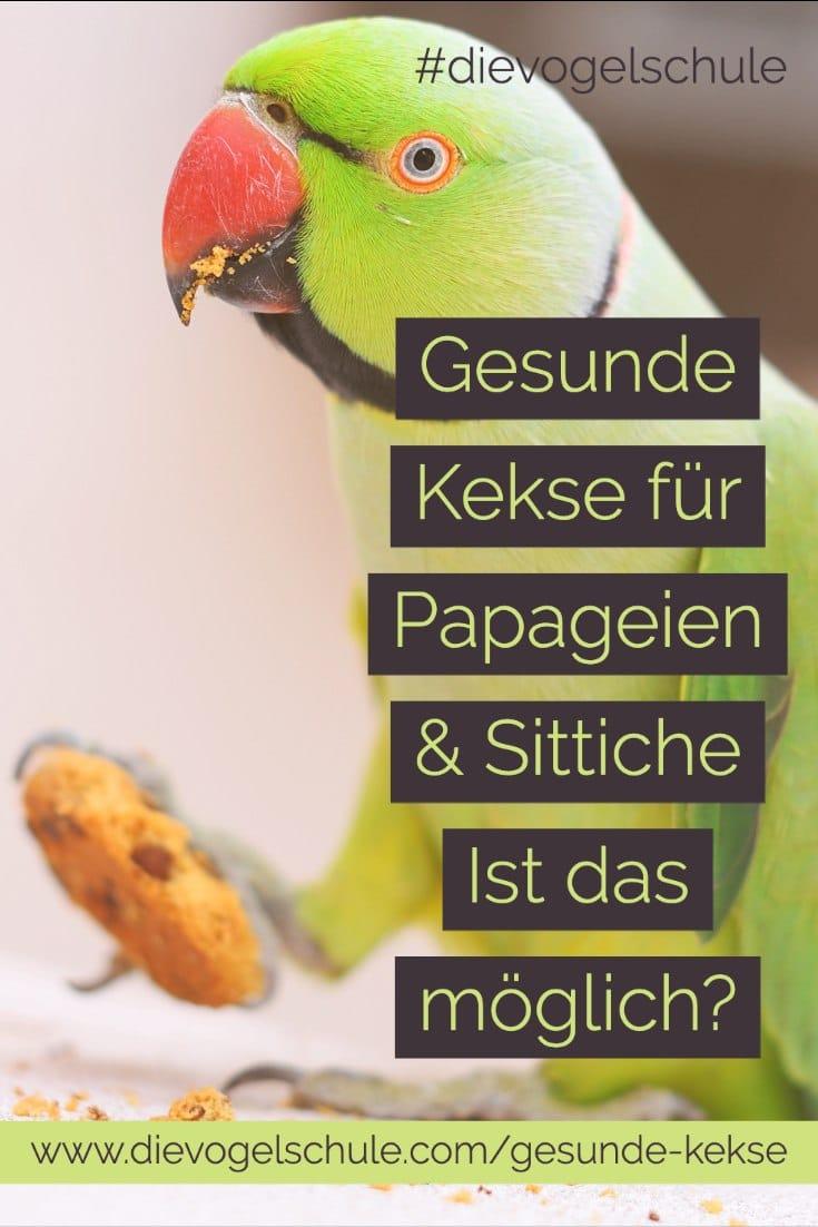 Gesunde Kekse Papageien & Sittichen Halsbandsittich mit Schokokeks