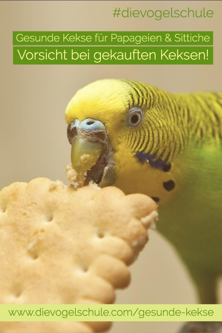 Gesunde Kekse Papageien & Sittichen Wellensittich mit Butterkeks