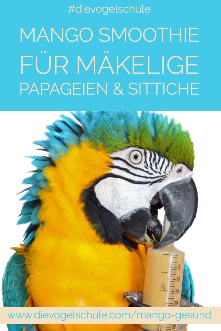 Mango gesund Papageien & Sittiche Ara mit Mango Smoothie Spritze
