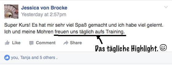 Mohrenkopfpapagei Training