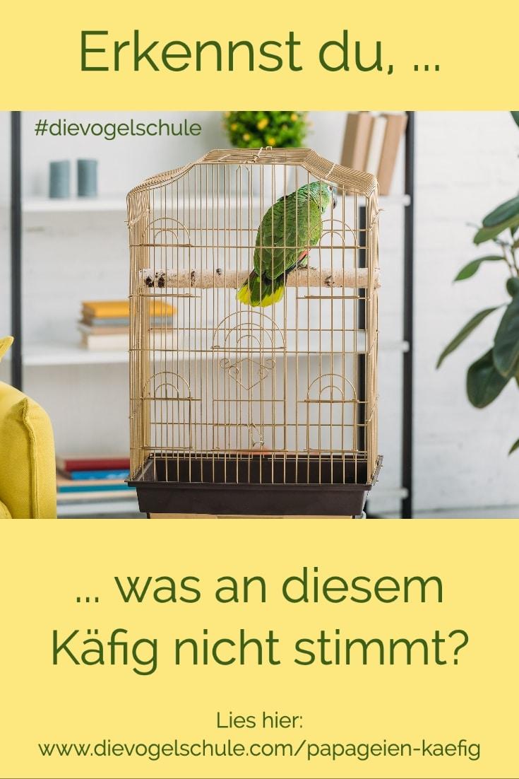 Amazone im Papageien-Käfig aus Messing