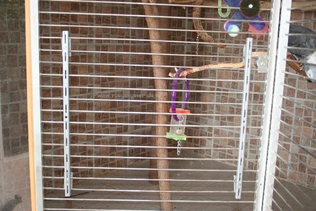 Papageien-Badewanne Schienen