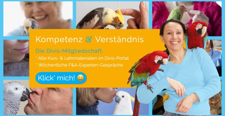 DIVIS-Papageien-Vögel-Wellensittiche