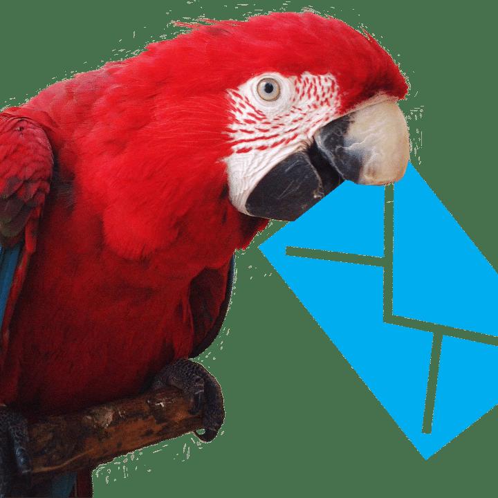 Newsletter Papageien Wellensittiche